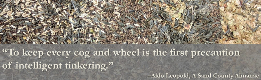 a mix of prairie seeds with a quote from Aldo Leopold: to keep every cog and wheel is the first precaution of intelligent tinkering""