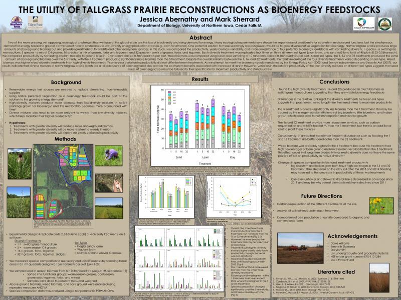 The utility of tallgrass prairie reconstructions as bioenergy feedstocks