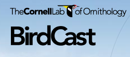 BirdCast Cornell
