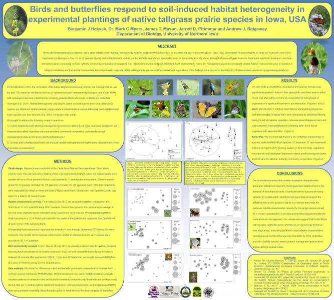 Birds and butterflies respond to soil-induced heterogeneity in experimental plantings of native tallgrass prairie species in Iowa, USA