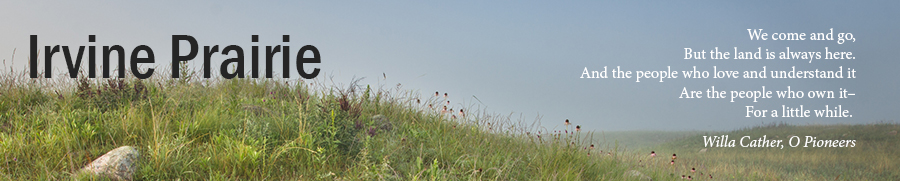 "Header image ""Irvine Prairie"" with Willa Cather quote"