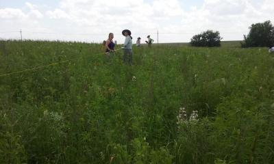 Sampling vegetation on a 96-degree day.
