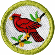 Bird Study Merit Badge Patch