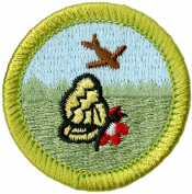 Nature Merit Badge Patch