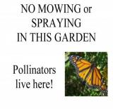 No Mowing or Spraying in this Garden Pollinators Live Here!