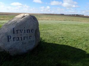 Irvine Rock