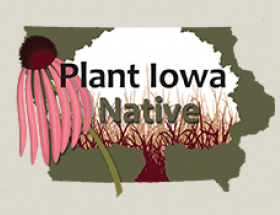Plant Iowa Native