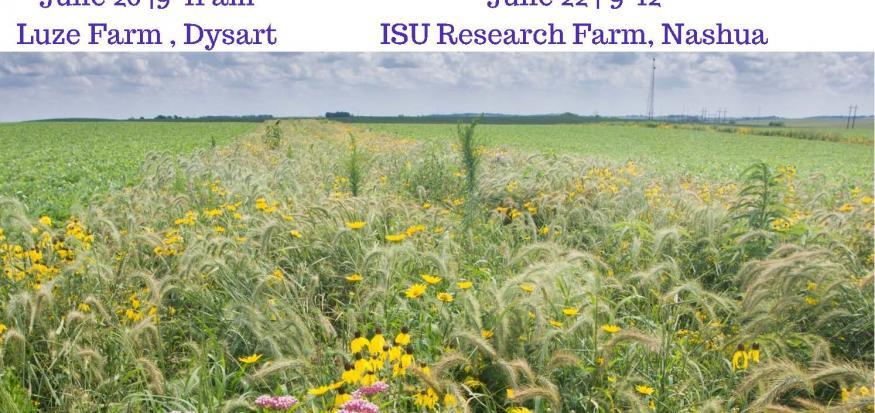 Prairie On Farms Field Days June 20 9-11am at Luze Farm, Dysart & June 22 9-12pm at ISU Boralug Learning Center, Nashua